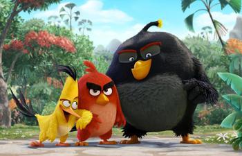 Pré-bande-annonce du film Angry Birds