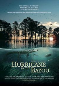 Ouragan sur le bayou