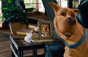 Le nouveau film de Scooby-Doo pourrait mettre en vedette des acteurs réels