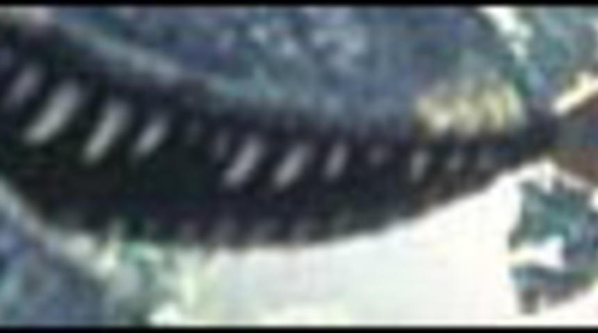 Un scientifique pour Jurassic Park 4