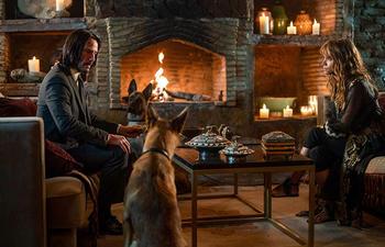 Nouveautés : John Wick: Chapter 3 - Parabellum et A Dog's Journey
