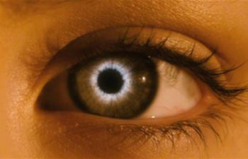 L'Hebdo : Le cinéma à la rescousse du livre