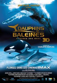Dauphins et baleines 3D