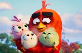 Nouveautés : The Angry Birds Movie 2 et Where'd You Go, Bernadette